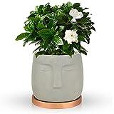 FORMIZON Blumentopf mit Untersetzer, Zement Blumentopf, Sukkulenten Töpfe mit Untersetzer, Pflanzer...