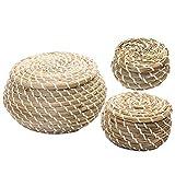 Cabilock 3 Stück Weidenkorb mit Deckel handgewebter Korb Aufbewahrungsboxen für Schminke Bad...