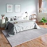 Mia´s Teppiche Olivia Wohnzimmer Teppich, 100% Polyester, Grau, 160x230 cm