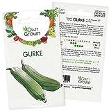 Gurken Samen: Premium Gurken Saatgut für ca. 20 Gurken Pflanzen – Gemüse Samen – Samen Gemüse...