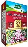 Westland 20600099 Fish, Blood and Bone Allzweck-Pflanzenfutter, 4 kg, Natur