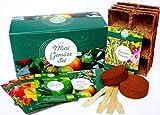 Bio Mini Gemüse Anzuchtset - 4 Sorten Bio Balkon Gemüse Samen. Perfektes Gemüseset für Topf,...