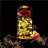 Die Schöne und Das Biest Verzaubert Rose, SUNJULY Rose im Glas, Rose LED Lichterketten Romantisch...