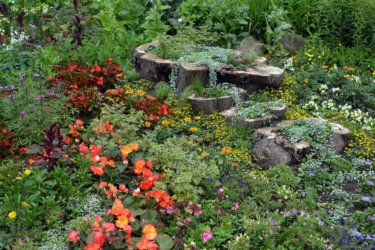 Ansprüche an den Boden für ausgewählte Pflanzen