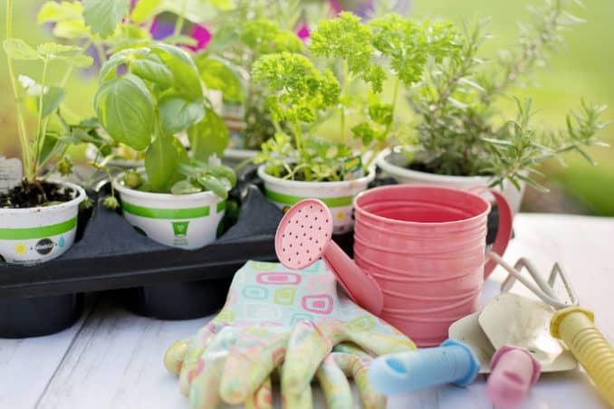 Garten Ratgeber - Vorbereitungen im Frühling