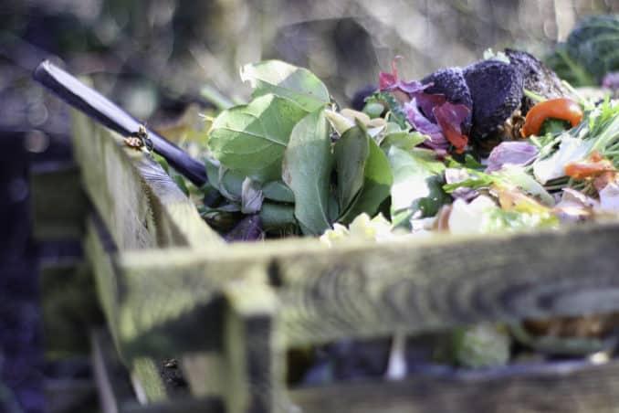 Richtig Kompostieren