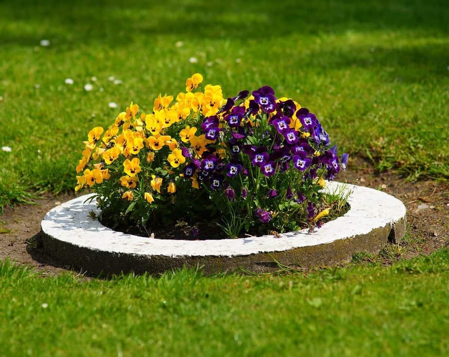 Kreatives Blumenbeet