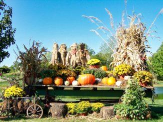 Halloween Dekoration im Garten